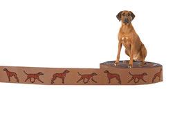 1m Ridgeback Webband Borte Hund, 22mm breit, beige