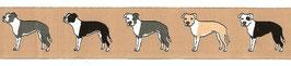 "1m Webband ""American Staffordshire / Pitbull Terrier"" Borte Hund, 28mm breit, beige"