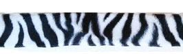 1m Borte Zebra schwarz-weiß, 40mm breit
