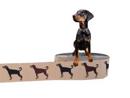 1m Dobermann Webband Borte Hund, 25mm breit, beige
