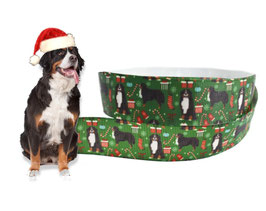 1m Weihnachten Borte Hund, Berner Sennenhund, 22mm breit