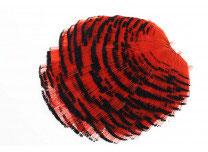 Flies & More Goldfasan Tippet Sektion