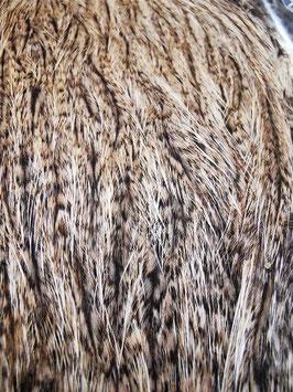 Whiting Coq de Leon Hen Cape