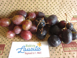 Bio Weintrauben rot bzw. blau kernlos (9,98 € / kg)