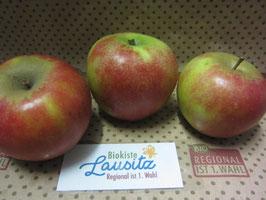 Bio Apfel Holsteiner Cox (3,70 € / kg)