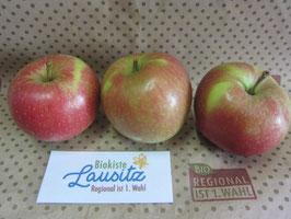 Bio Apfel Santana (3,98 € / kg)