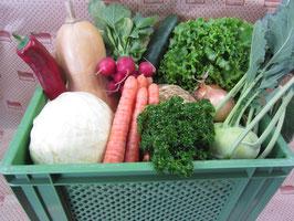 Biokiste Gemüse