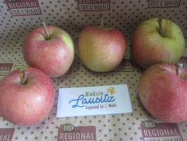 Bio Apfel Early Gala (3,50 € / kg)    neue Ernte