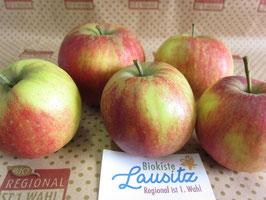 Bio Apfel Jonagold (3,98 € / kg)