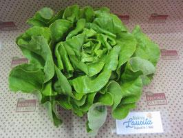 Bio grüner Kopfsalat Stück