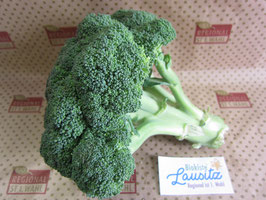 Bio Brokkoli (6,50 € / kg)