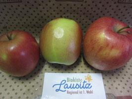 Bio Apfel Braeburn (3,70 € / kg)