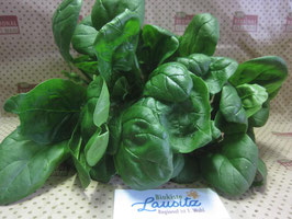 Bio Spinat (9,96 € / kg)