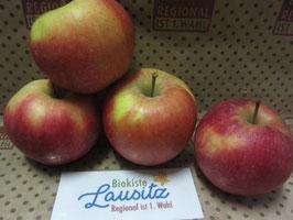 Bio Apfel Galant (3,50 € / kg)