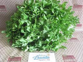 Bio Salanova-Salat Stück