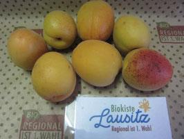 Bio Aprikosen (4,80 € / kg)