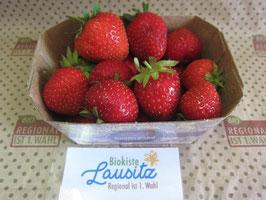Bio Erdbeeren 250g Schale