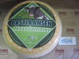 Bio Käselaib Maasdamer ca. 4kg (14,98€ / kg)