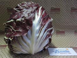 Bio Radicchio-Salat