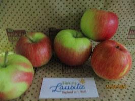 Bio Apfel Deljonka  (4,50 € / kg)