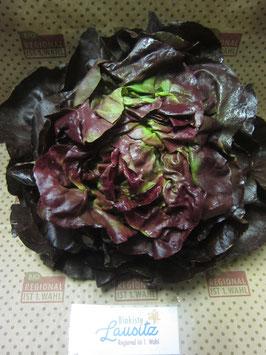 Bio roter Kopfsalat Stück