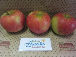 Bio Apfel Elstar (3,98 € / kg)