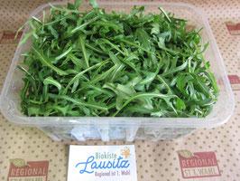 Bio Rucola  (100g / 1,99 €)