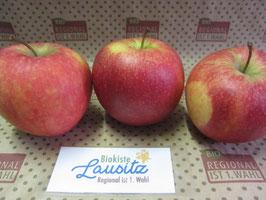 Bio Apfel Pinova (3,98 € / kg)