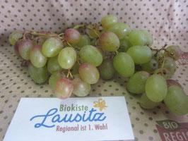 Bio Weintrauben rot (6,50 € / kg)