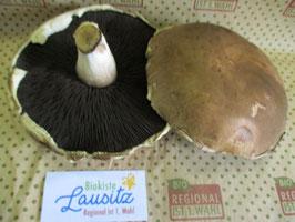 Bio Portobello (Riesenchampignons) (11,96 € / kg)