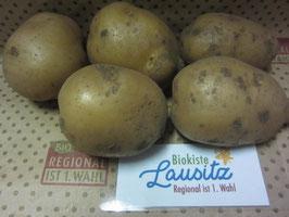 "Bio Kartoffeln mehlig ""Record"" (2,49 / kg)"