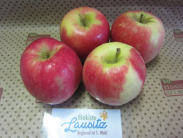 Bio Apfel Cripps Pink (4,80 € / kg)