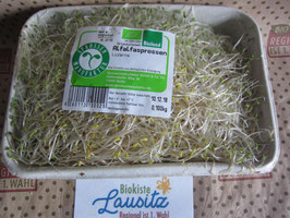 Bio Alfalfasprossen 100g