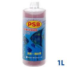 PSB 1L
