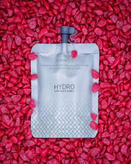 Shampoo con Fico & Cassis arricchito con estratti bio di Ribes nero in formato Doypack da 30ml.