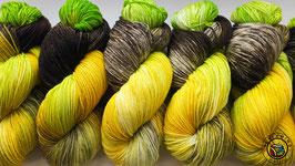 ColourHighTwist 6fach Gelbe Tulpe