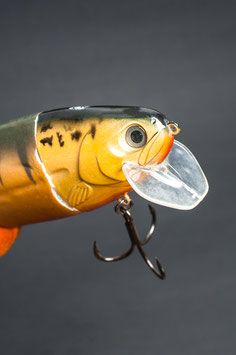 "Castaic Realbait 9""_Perch Orange"
