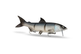 Renky One _ Silver Fish
