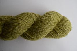 Wood Sorrel (Aran)