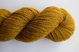 Lichen (Aran)