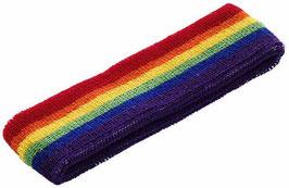 Rainbow Sweatband / Schweißband