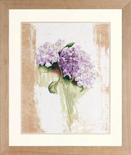 Blauwe hortensia