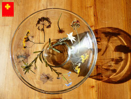 Glasschale 036