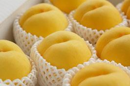 黄桃「黄金桃」「黄貴妃」「きららの極み」