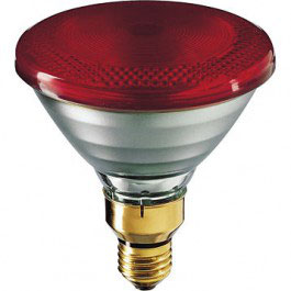 Philips Infraroodlamp