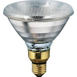 Philips warmtelamp wit