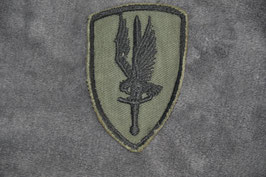 Local made 1st Aviation Brigade patch. Subdued.