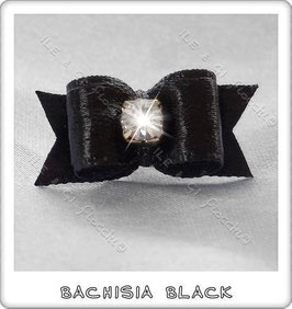 BACHISIA BLACK
