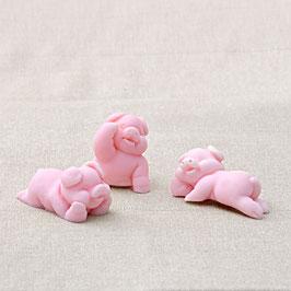 Schweinderl