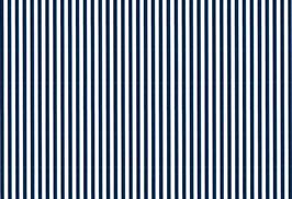 04039 Baumwolle Westfalenstoff blau Streifen